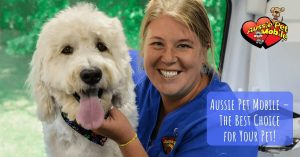Aussie Pet Mobile – The Best Choice for Your Pet