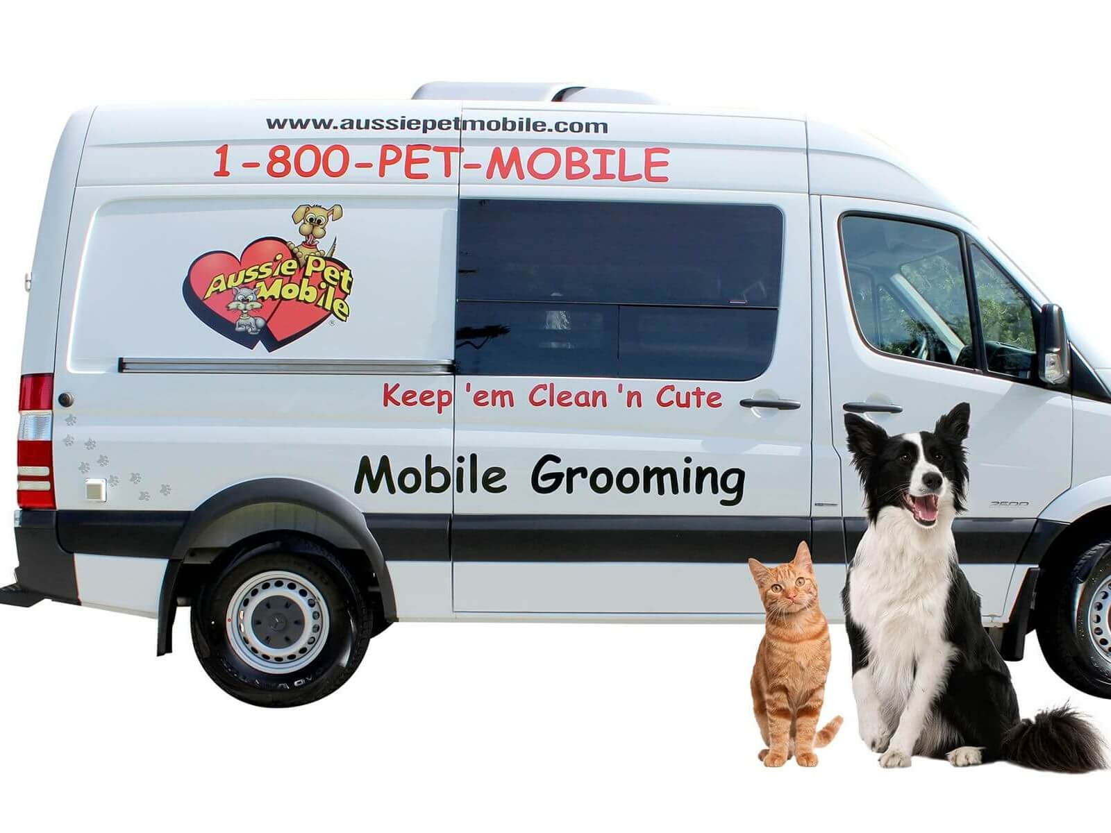 Aussie Pet Mobile SE Orlando | Mobile Grooming for Cats & Dogs